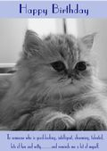 "Cat-Persian-Happy Birthday - ""Reminds Me A Lot Of Myself"" Theme"